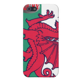 welsh rugby iPhone 5 cover