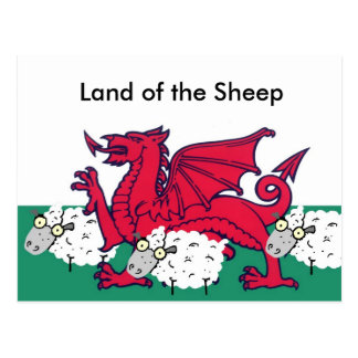 welsh sheep, Land of the Sheep Postcards