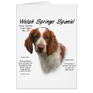 Welsh Springer Spaniel History Design Card