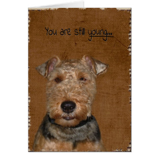 Welsh Terrier Birthday humor Card