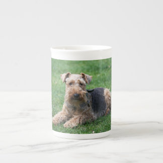 Welsh Terrier dog cute photo bone china mug