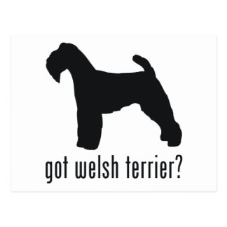 Welsh Terrier Post Card