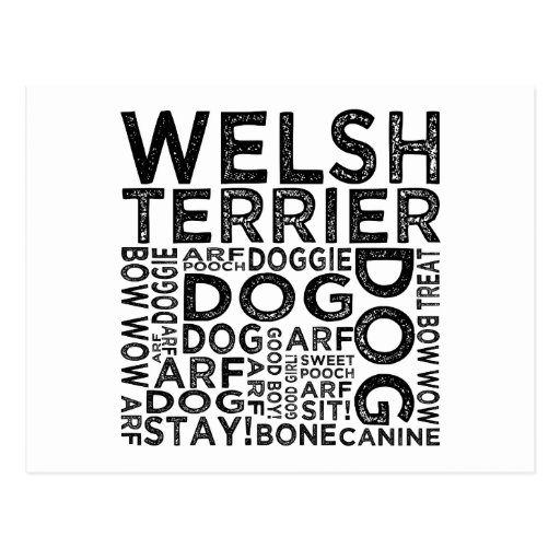 Welsh Terrier Typography Postcards
