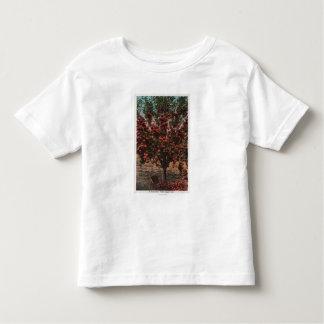 Wenatchee, WAA Wenatchee Valley Apple Tree Toddler T-Shirt