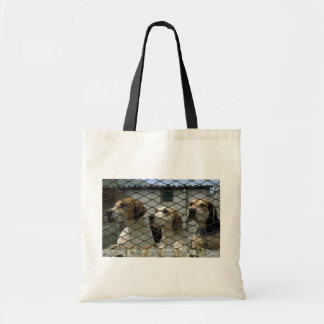 Wensleydale foxhounds in kennels, Yorkshire, Engla Tote Bags