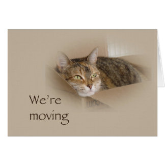 We're Moving Notification Card - Lily
