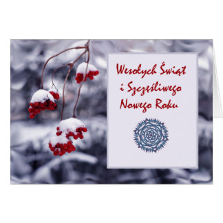 Wesolych Swiat, Merry Christmas in Polish, Winter Greeting Card