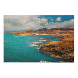 West coast of Scotland Wood Print