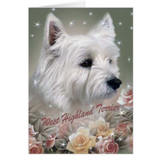 West Highland Terrier Among Roses Cards