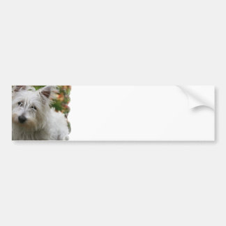 West Highland Terrier Bumper Stickers
