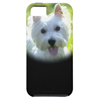 West Highland Terrier iPhone 5 Case