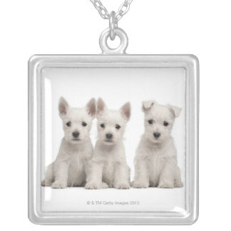 West Highland Terrier puppies (7 weeks old) Square Pendant Necklace