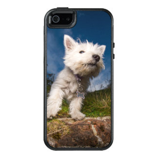 West Highland Terrier Puppy OtterBox iPhone 5/5s/SE Case