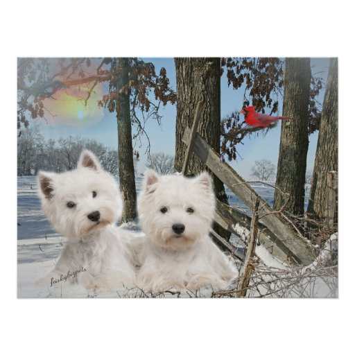 West Highland Terrier winter day Poster