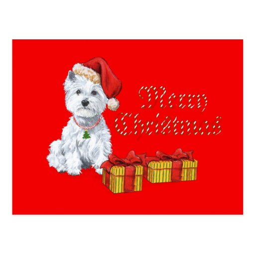 West Highland White Terrier Christmas Gifts Post Card