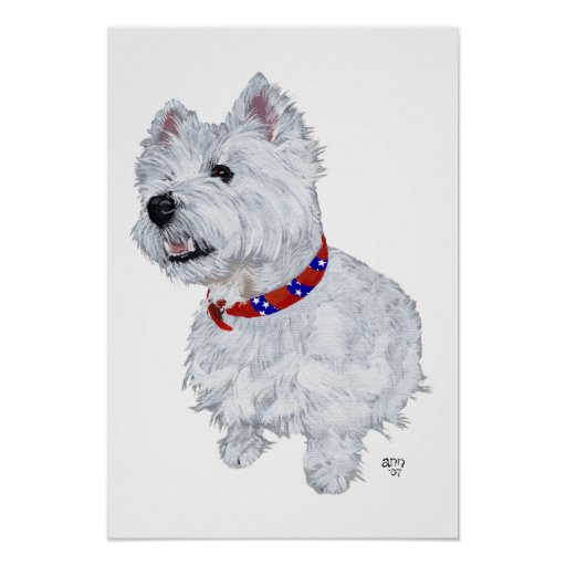 West Highland White Terrier Patriotic Poster