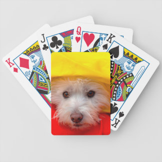West Highland White Terrier peeking out of yellow Bicycle Playing Cards