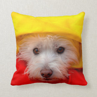 West Highland White Terrier peeking out of yellow Cushion