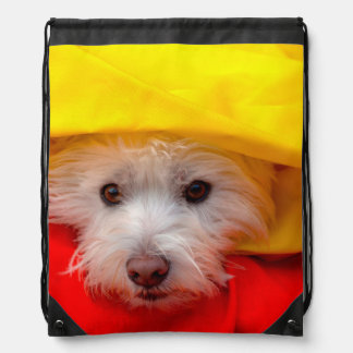 West Highland White Terrier peeking out of yellow Drawstring Bag