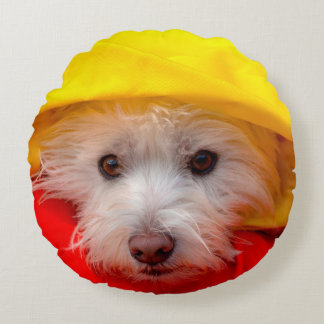 West Highland White Terrier peeking out of yellow Round Cushion