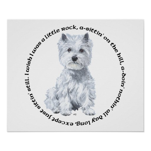 West Highland White Terrier Pensive Mood Poster