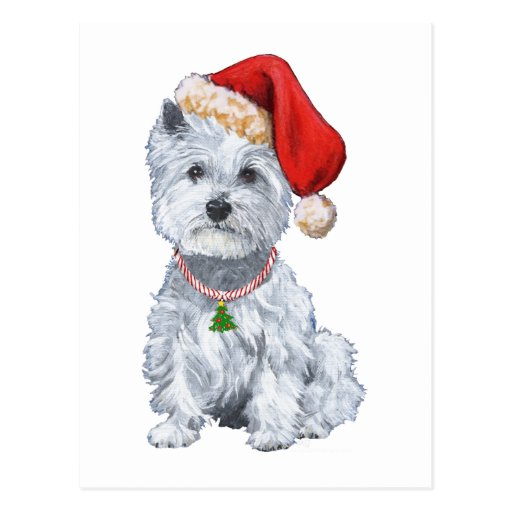 West Highland White Terrier Santa Claus Postcard