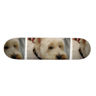 West Highland White Terrier Skateboard Deck