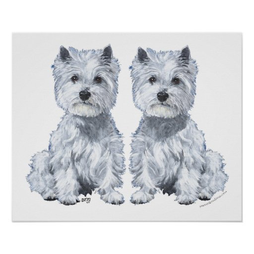 West Highland White Terrier Twins! Print
