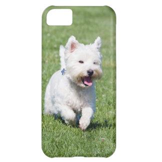West Highland White Terrier, westie dog cute photo iPhone 5C Case
