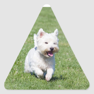 West Highland White Terrier, westie dog cute photo Triangle Sticker