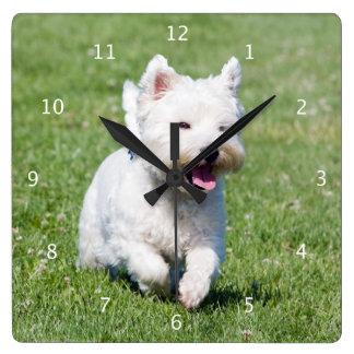 West Highland White Terrier, westie dog cute photo Wall Clocks