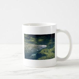 West Indian (Florida) Manatee-breathing Coffee Mug