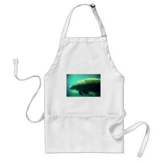 West Indian Florida Manatee-underwater Aprons