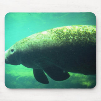 West Indian Florida Manatee-underwater Mousepads