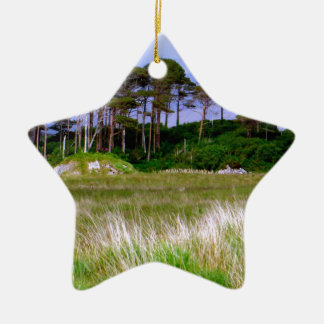 """West of Ireland Landscape"" Christmas Ornament"