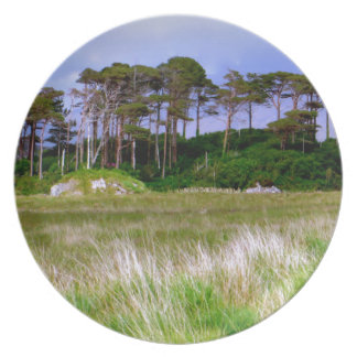 """West of Ireland Landscape"" Plate"