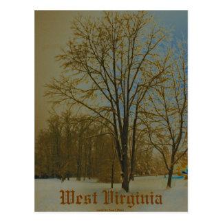 West Virginia in Snow Postcard