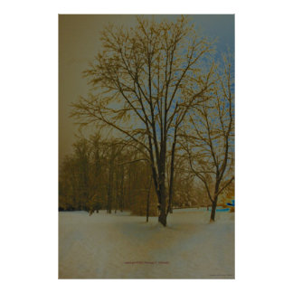 West Virginia in Snow Poster