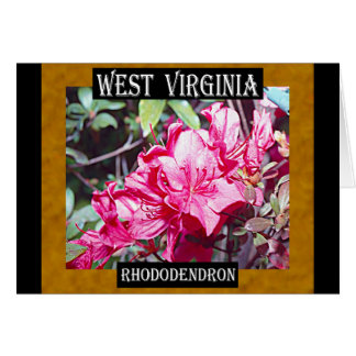 West Virginia Rhododendron Maximum Card