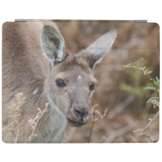 Western Australia, Perth, Yanchep National Park iPad Cover
