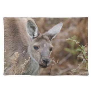 Western Australia, Perth, Yanchep National Park Placemat