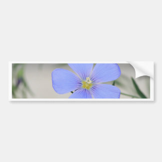 Western Blue Flax Blossom Bumper Sticker