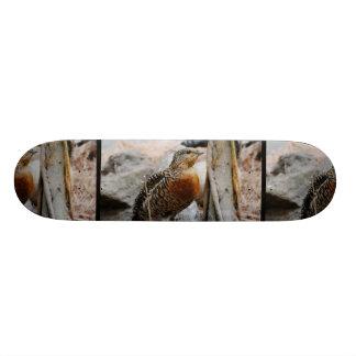 Western Capercaillie Custom Skate Board