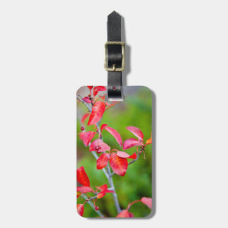 Western Choke Cherry (Prunus Virginiana) In Fall Luggage Tag