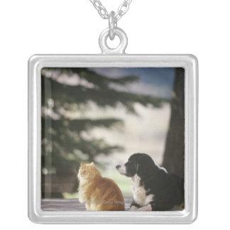 Western Colorado, USA Silver Plated Necklace