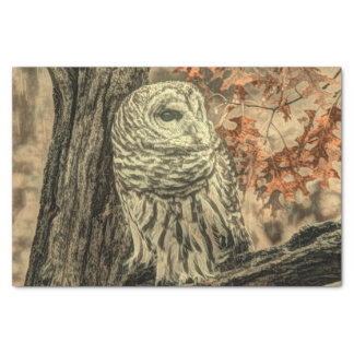 western country autumn leaves oak tree white owl tissue paper