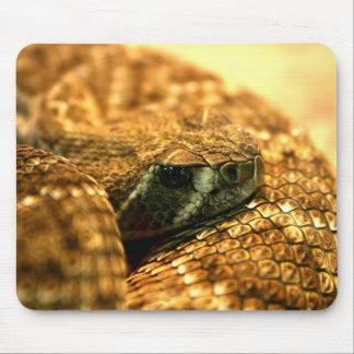 Western Diamondback Rattle Snake Mouse Pad