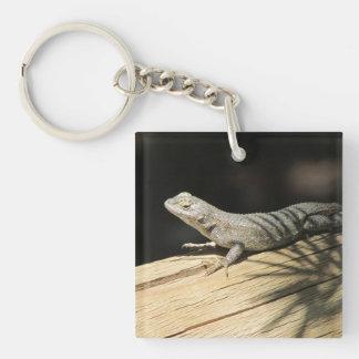 Western Fence Lizard Keychain