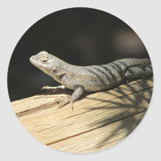 Western Fence Lizard Stickers