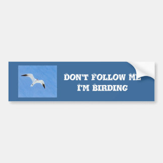 Western Grebe Birding Bumper Sticker